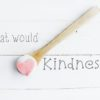 What would Kindness do?